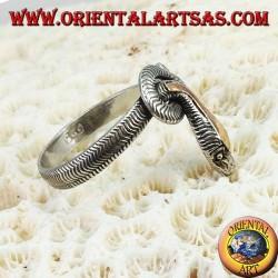 Anillo de plata en forma de una serpiente entera con una placa dorada sobre la cabeza