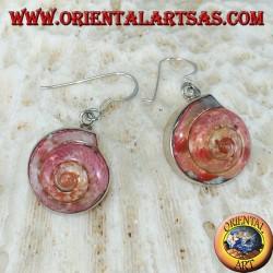 Серебряные серьги с розовым наутилусом