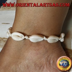Anklet of carea cowrie shells, knotted with cream-colored thread