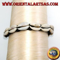 Bracelet of carea cowrie shells with analergic metal clasp