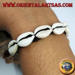 Caure cowrie shells bracelet in a row