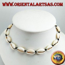 Cauri ciprea shells necklace adjustable