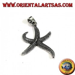 Starfish pendant in burnished silver