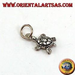 Silver pendant, small terrapin turtle