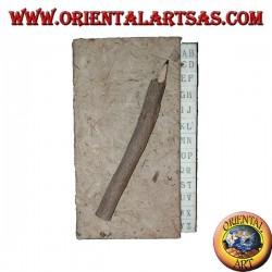 Rubrica telefonica in corteccia d'albero con matita nel tronco, 11 cm