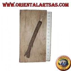 Annuaire téléphonique en écorce d'arbre et grandes lettres avec un crayon, 21 cm