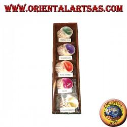 Set von 5 Duftkerzen in der Schale mit verschiedenen Geschmacksrichtungen