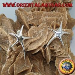 Серебряные серьги с морскими звездами и лобстерами