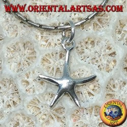 Small silver pendant in the shape of a starfish