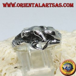 Silver ring, Kamasutra the position of the missionary on the side