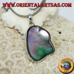 Pendant in irregular silver with concave paua shell (abalone)