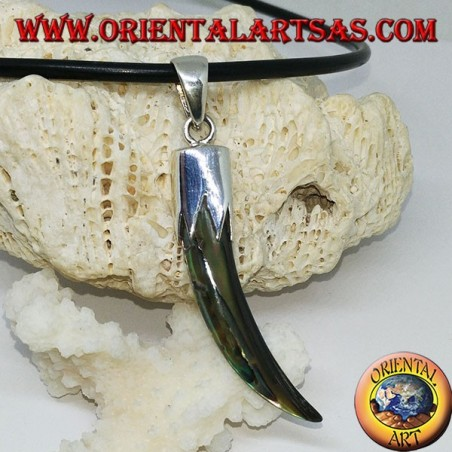 Pendant in silver with paalone Abalone horn