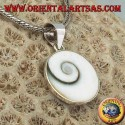 Pendant silver pendant eye of Saint Lucia shell Astraea rugosa