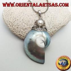 Ciondolo in argento Nautilus Fossil (mollusco) incornato da gancio in argento decorato con perla
