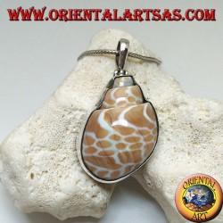 Ciondolo in argento con gasteropode marino fossile (guscio/conchiglia)