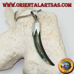Silver pendant with Abalone Paua horn with hood