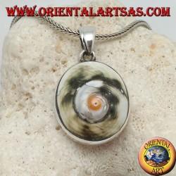 Ciondolo in argento occhio di santa Lucia o astrea rugosa su montatura liscia