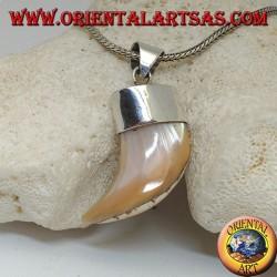 Breiter Calliostoma Perlmutt Silber Anhänger