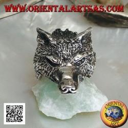 Anello in argento, testa di lupo artico o lupo delle nevi imponente (grande)