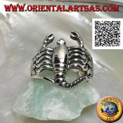 Silver ring in the shape of a smooth scorpion rounded on the algae