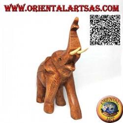 Scultura di un elefante tailandese con proboscide in su e zanne sporgenti, in legno di teak (21cm)