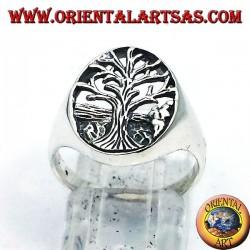 Silber Ring, Baum des Lebens Yggdrasil