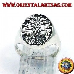 Silver ring, Tree of Life Yggdrasil