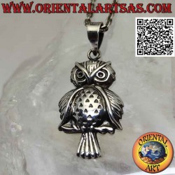 Silver pendant, the owl on...