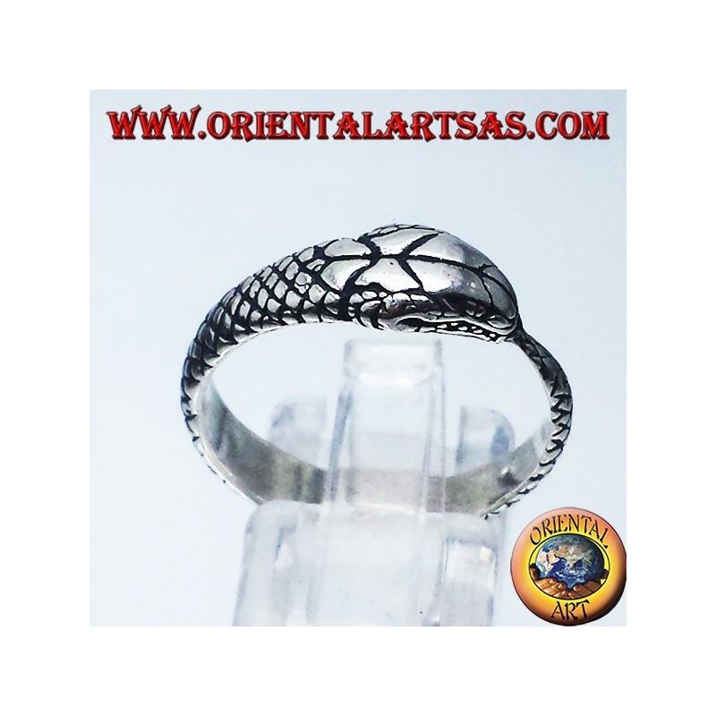 Silver ring, Ouroboros