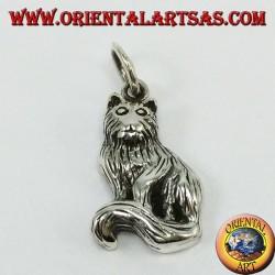 Ciondolo d'argento, gatto Persiano