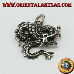 Silver pendant, twisted dragon